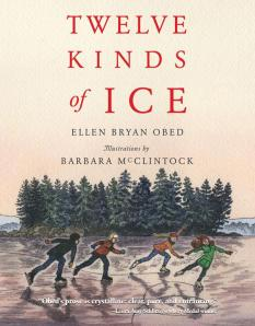 twelve kinds of ice cover image