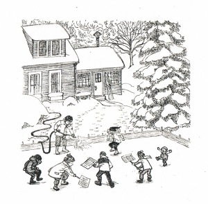 twelve kinds of ice illustration2 barbara mcclintock