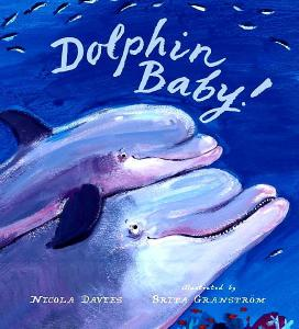 dolphin baby cover image