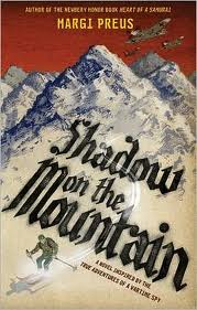 shadow on the mountain cover image