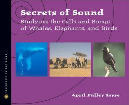 secrets of sound cover image
