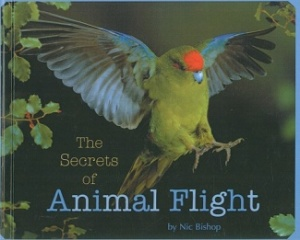 the secrets of animal flight cover image