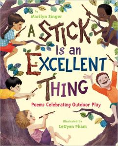 a stick is an excellent thing cover image