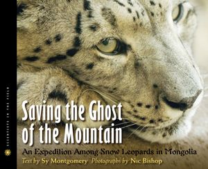 saving the ghost of the mountain cover image