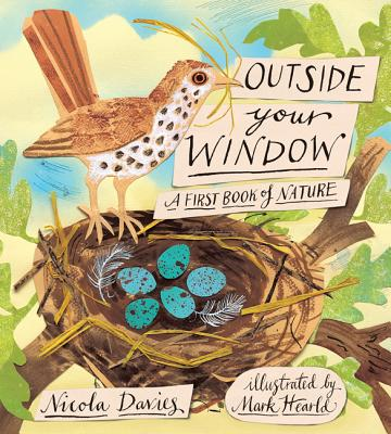 outside your window davies and hearld cover image
