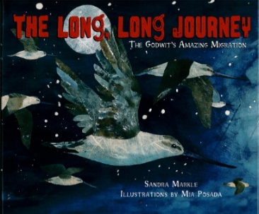 the long long journey cover image