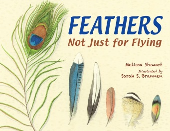 feathers not just for flying cover image