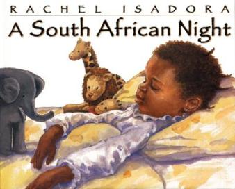 a south african night cover image