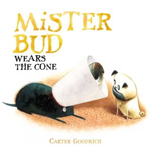 mister bud wears the cone cover image