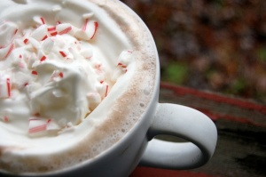peppermint-cocoa from thesweetestoccasion dot com