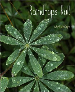 raindrops roll cover image