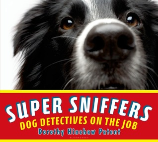 super sniffers cover image