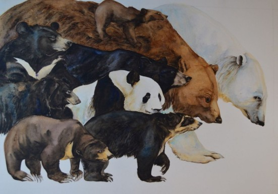 something about a bear illustration jackie morris