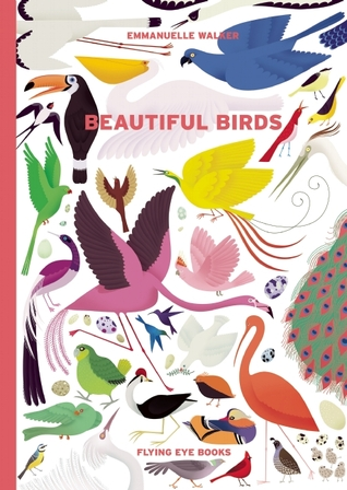 beautiful birds cover image