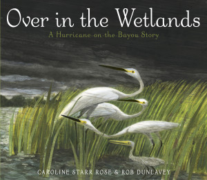 OVERINTHEWETLANDS_jacket300-300x261