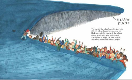 the blue whale interior jenni desmond