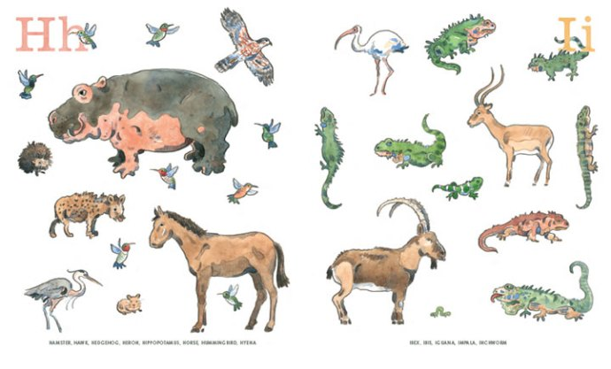 8 an animal alphabet interior elisha cooper