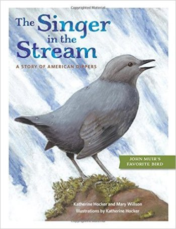 the singer in the stream cover image