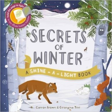 secrets of winter cover image