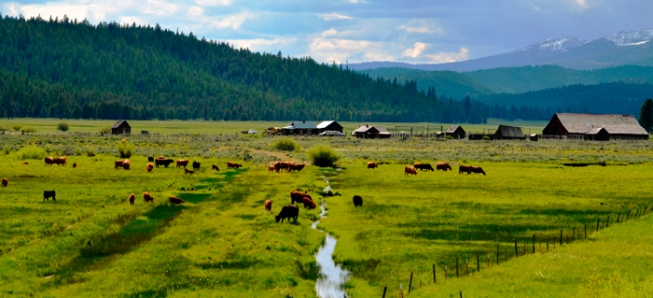 eastern-oregon-ranches