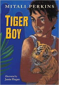tiger boy cover image