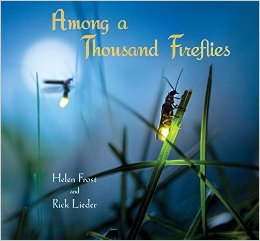 among a thousand fireflies cover image