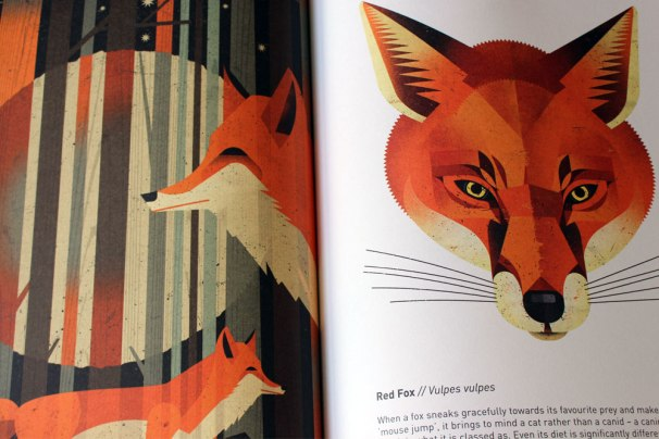 wild animals of the north interior spread by dieter braun