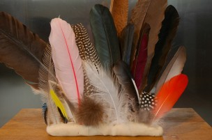 feather-collection