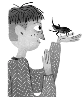 beetle-boy-illustration-julia-sarda
