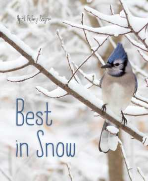 best-in-snow-cover-image