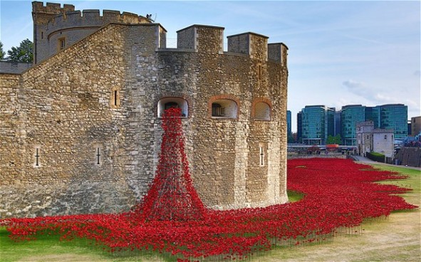 Poppy installation at the Tower of London, 2014
