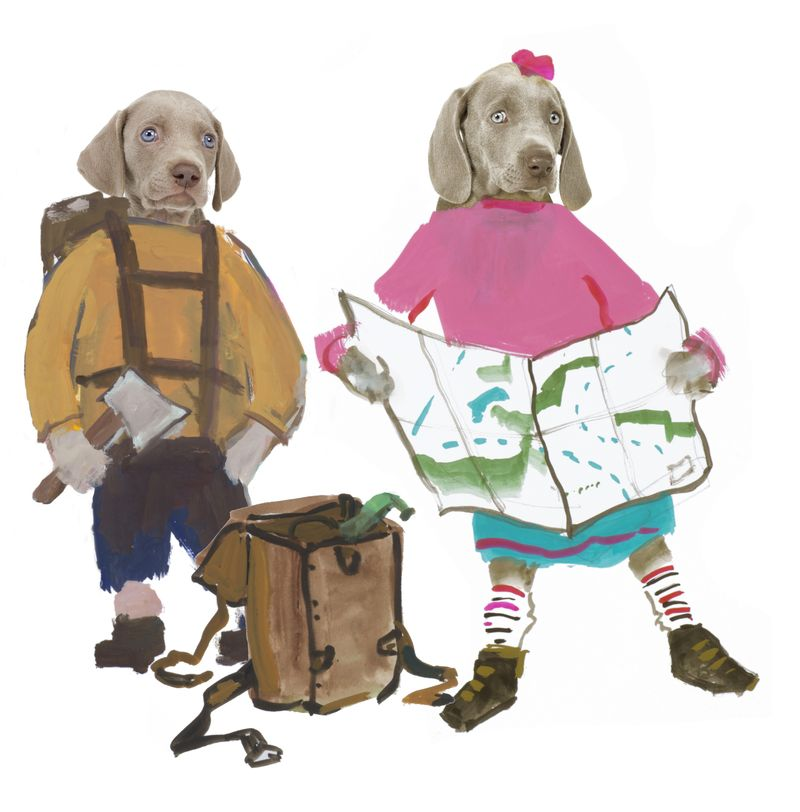 flo and wendell explore illustration William Wegman
