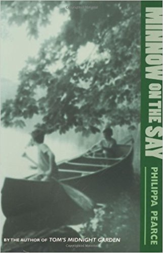 minnow on the say cover image