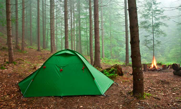 Camping-in-the-forest