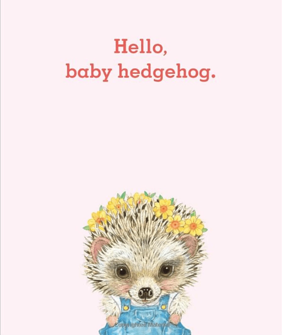 hello-baby-animals2-by-lorinda-bryan-cauley.png