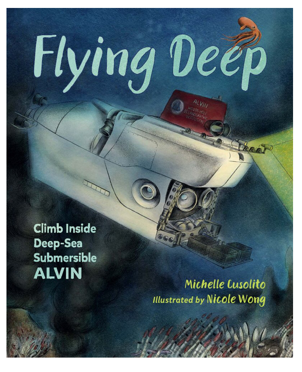 flying deep cover image