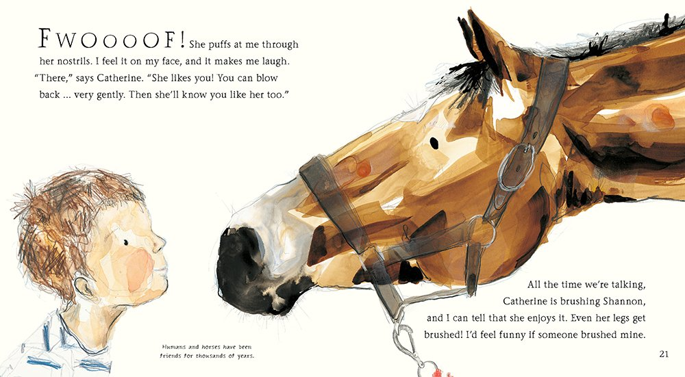 hello horse interior by French and Rayner
