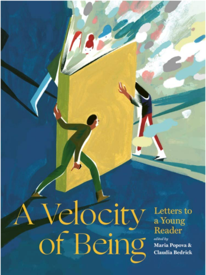 a velocity of being cover