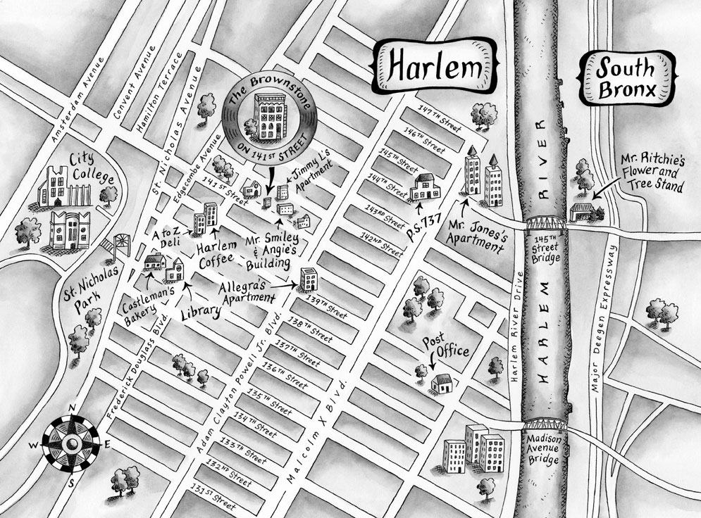 the vanderbeekers map