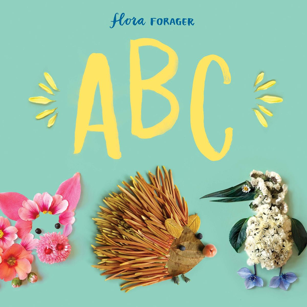 flora forager abc cover