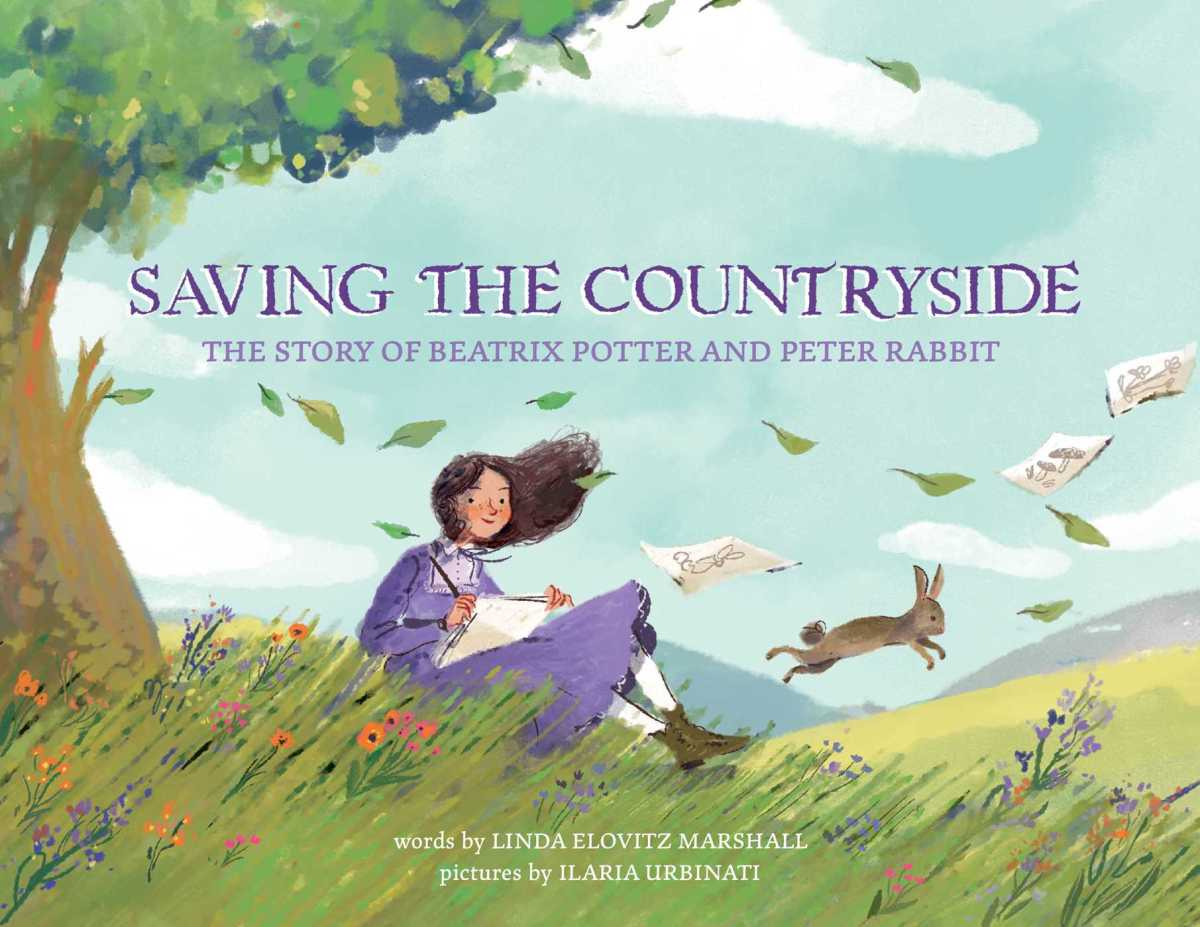 saving-the-countryside cover